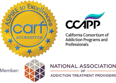 carf Accreditation, CCAPP and NAATP